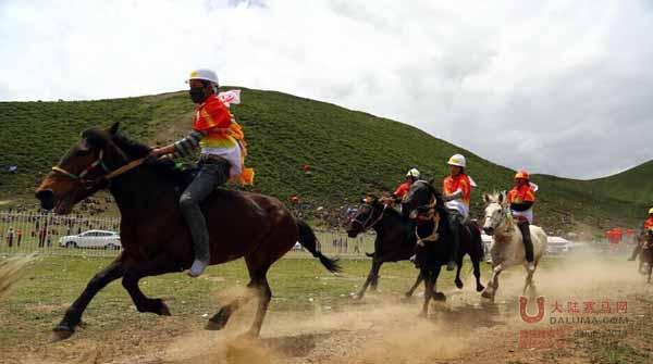 青海果洛州甘德县昨日举行传统赛马会