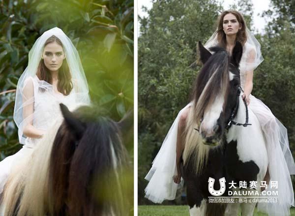 人与马的色情_吉普赛马:神遗忘在人间的优雅骑兽
