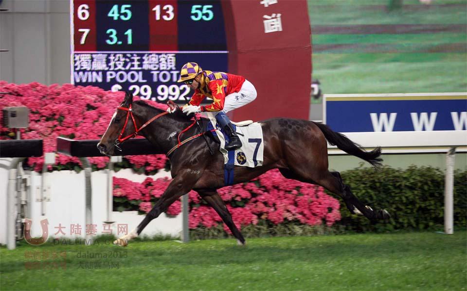 香港赛马狮威啤酒挑战杯3月30日现场图片