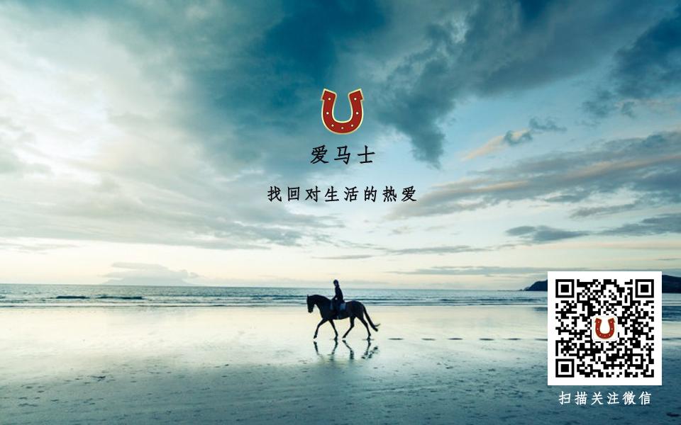 中国女选手陈倩在现代五项世界杯马术比赛中