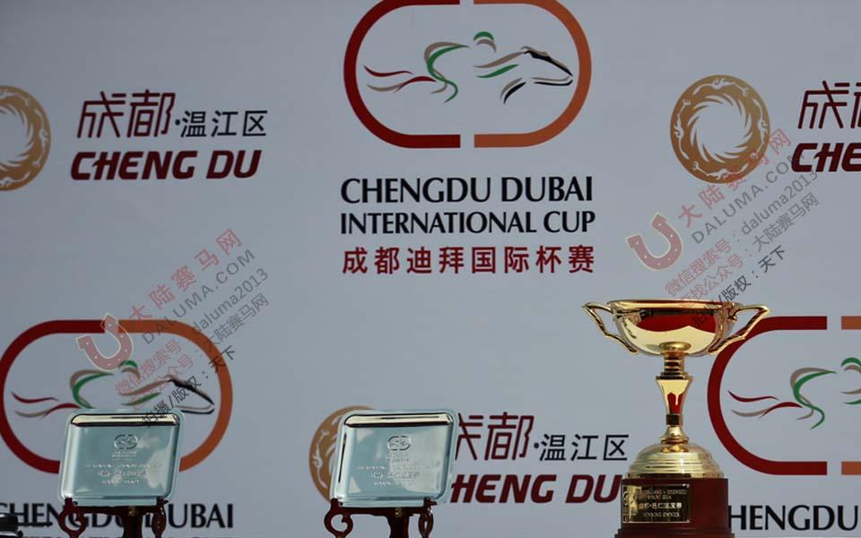 成都迪拜国际杯赛马现场精彩花絮图片(独家组图)