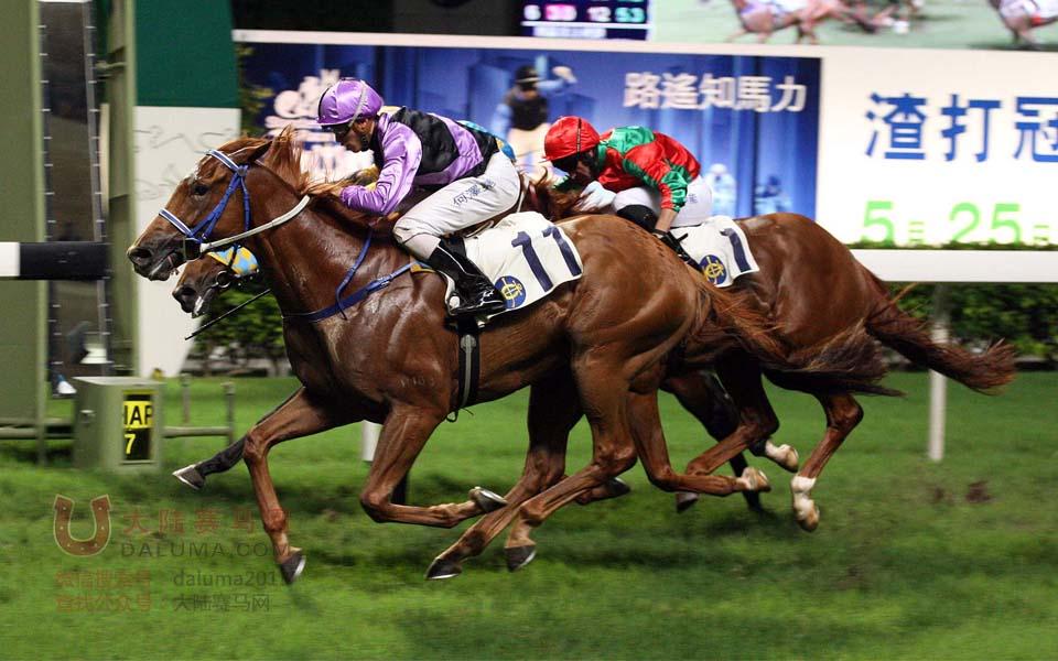 法国赛马会杯在香港跑马地马场举行
