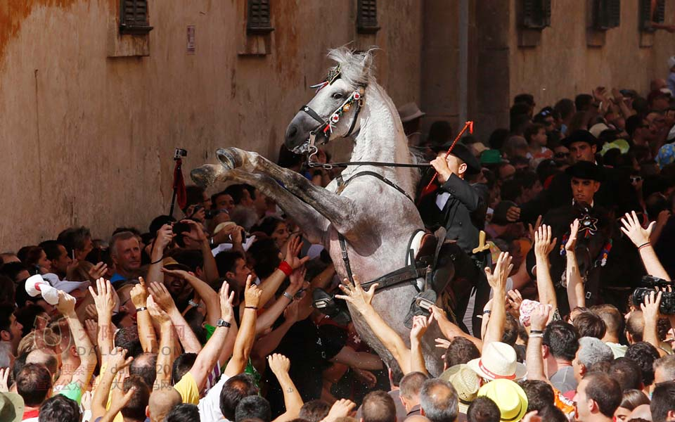 西班牙小镇举行围捕野马节 上演