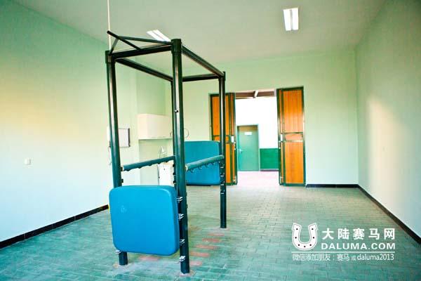 中国第一家专业马医院——北京西坞马医院