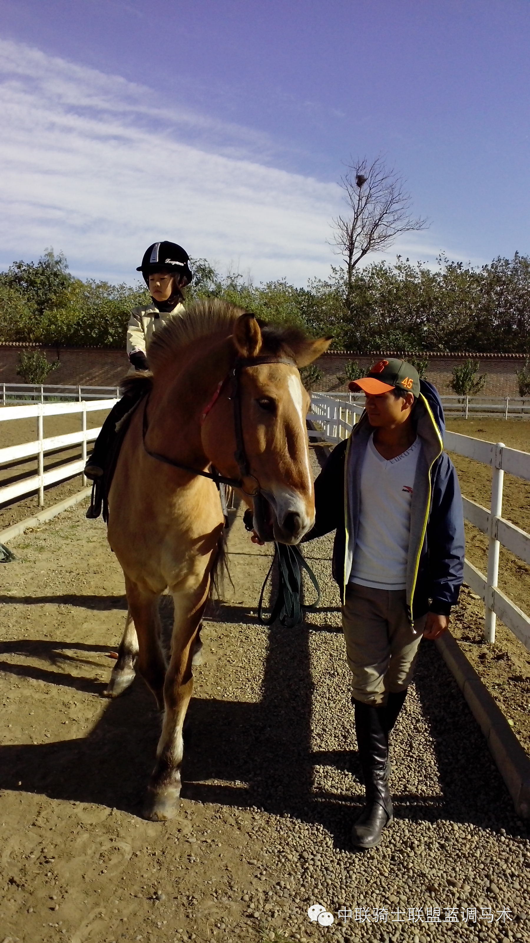 周末休闲 亲子骑马正流行