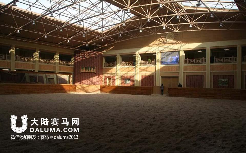 探访朝鲜美林马术俱乐部:陈列金正恩7岁时骑马照